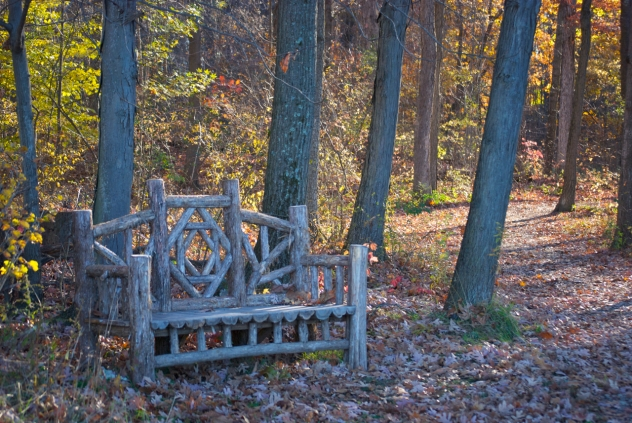 Poets Walk Park Bench