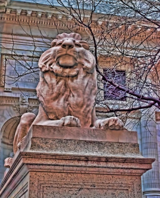 NYC Public Library Lion